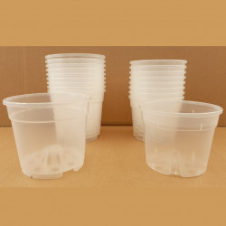 VASO CONTAINER TRASPARENTE 12 CM (TRANSPARENT POT)